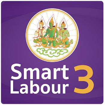 Smart Labour 3